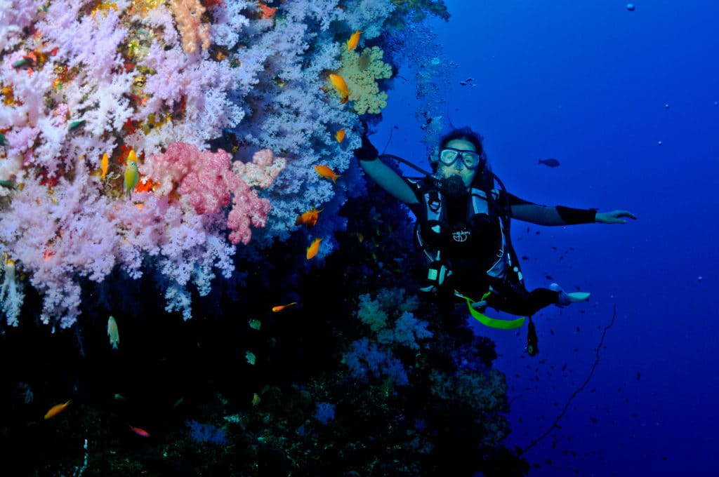 Tui Tai Best diving in Fiji