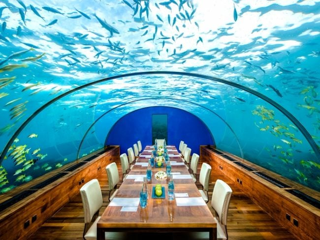 underwater dining at the conrad maldives