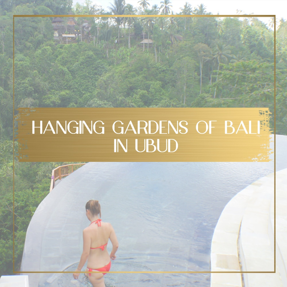 Hanging Gardens review feature