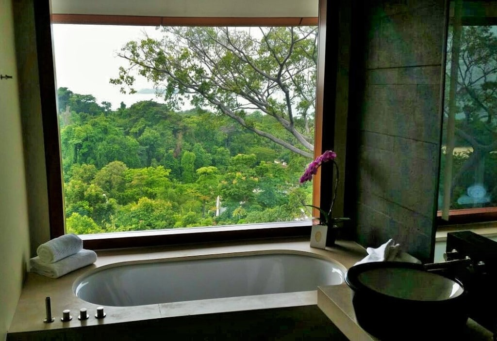 The bathtub with the views