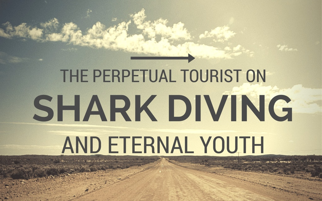 Perpetual tourist