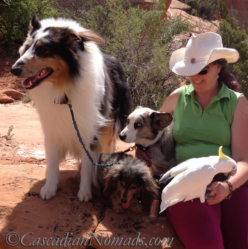 Travel Stories Part 5 Bethany and her pets
