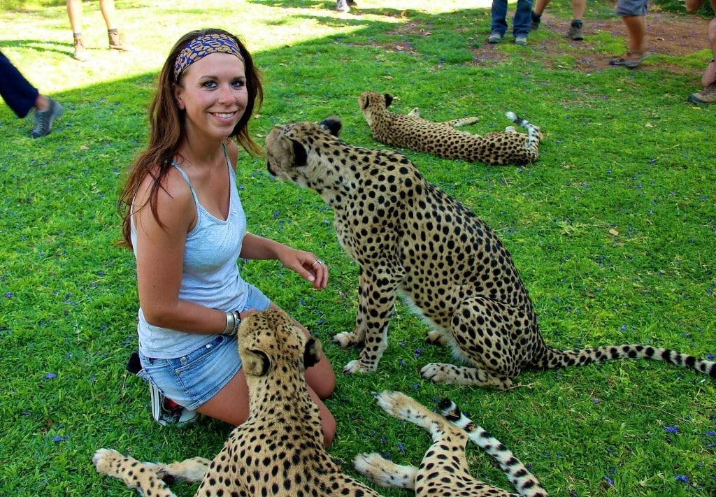Nicole Smoot with cheetahs