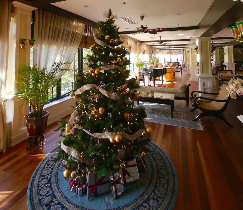 Christmas tree, Cameron Highlands