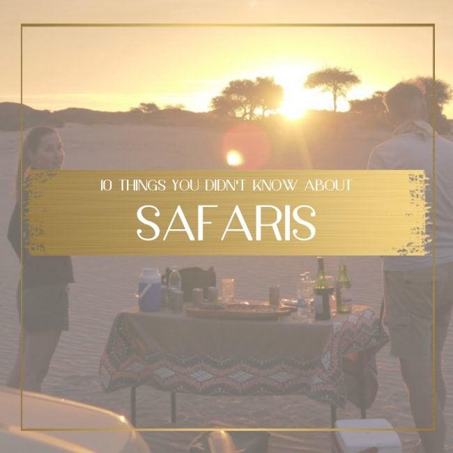 Safari Guide feature