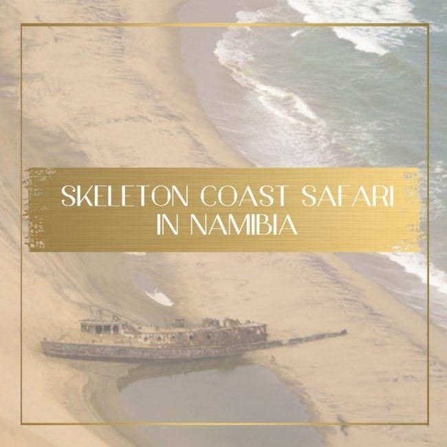 Skeleton Coast Safari feature