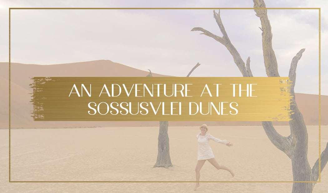 Magical Sunrise On The Sossusvlei Dunes Including Deadvlei