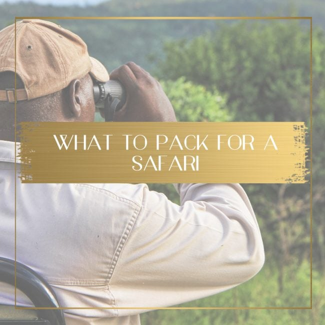 What to pack for a safari feature