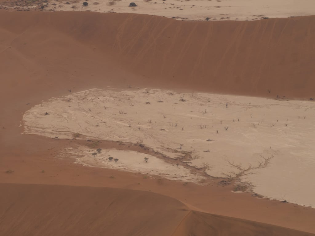 Deadvlei from above