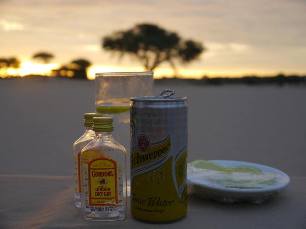A bush gin & tonic