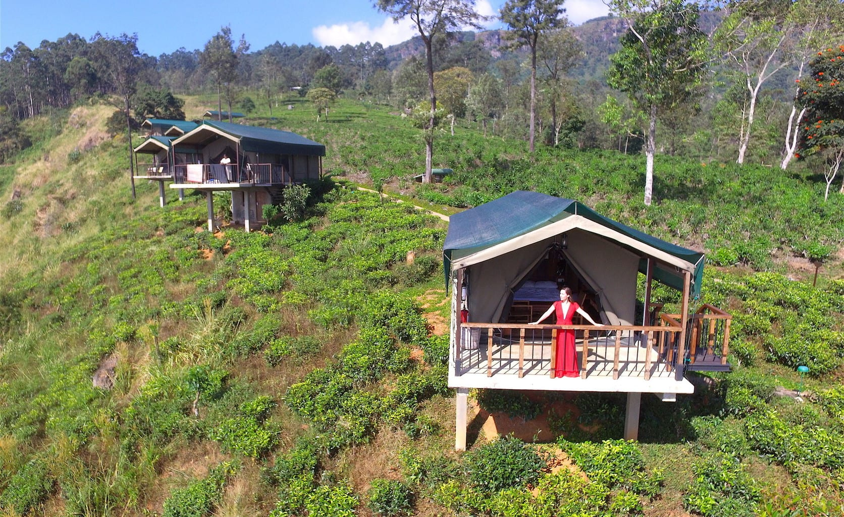 madulkelle tea and eco lodge glamping above kandy 39 s tea. Black Bedroom Furniture Sets. Home Design Ideas