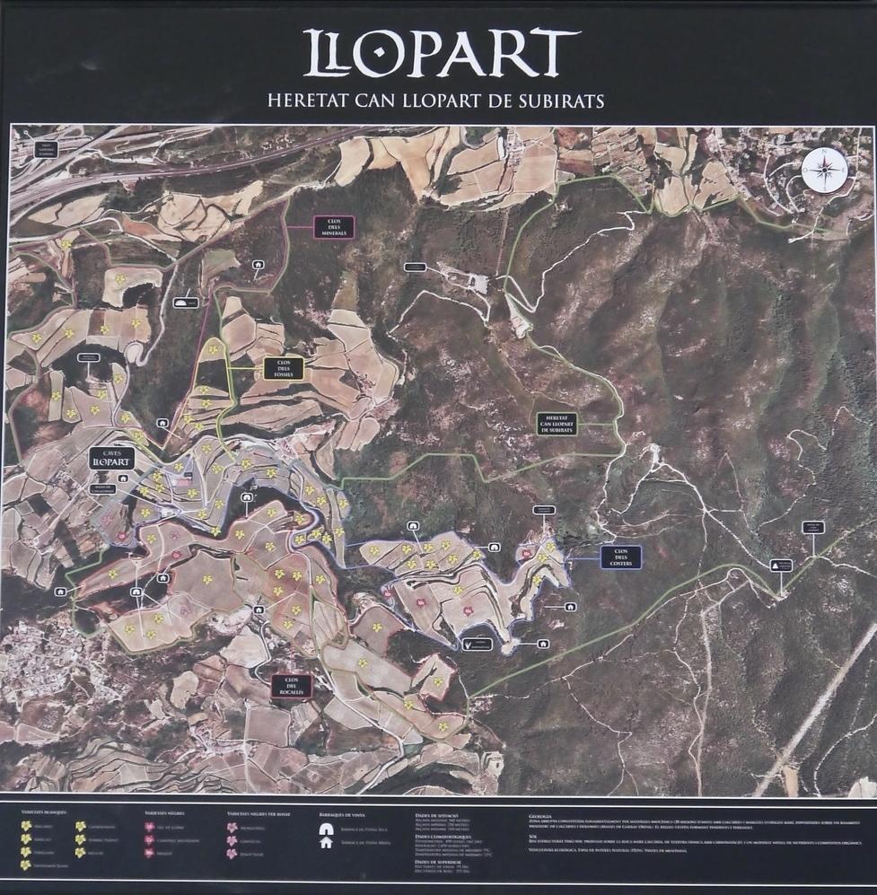 Cava Llopart Map