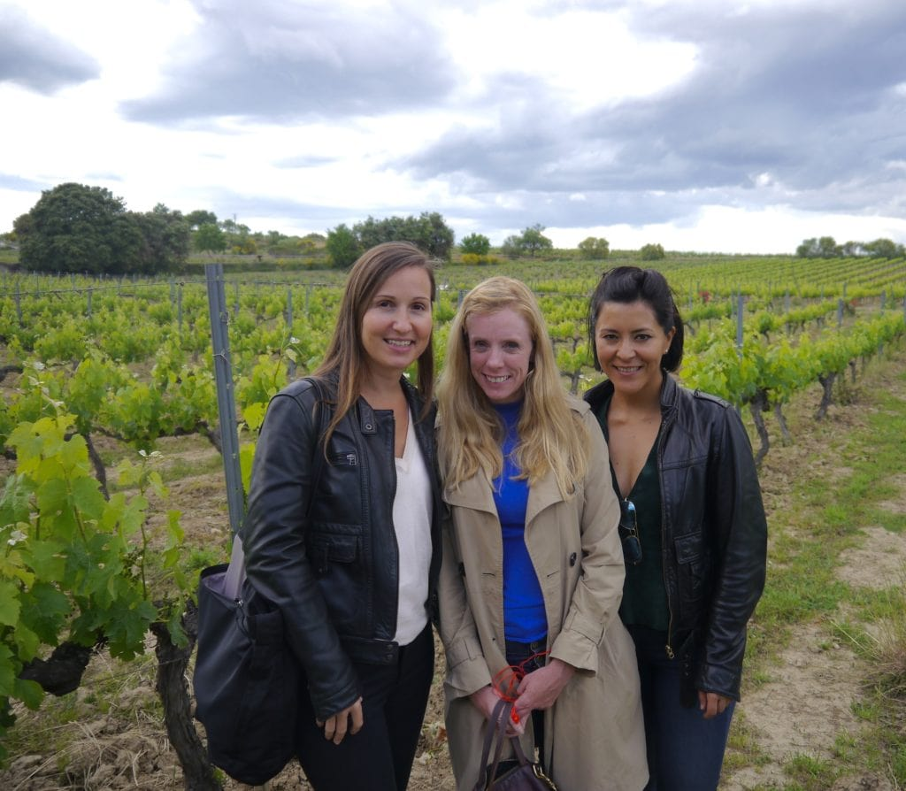 Torres winery tour
