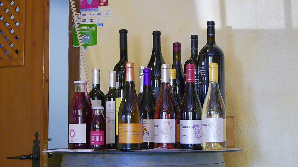 Foraster Wines