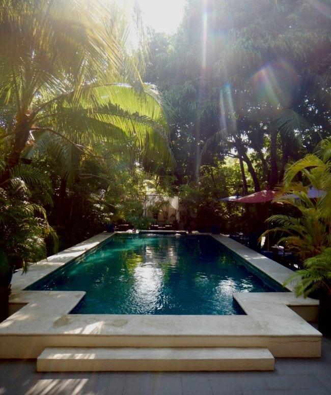 Lush pool The Pavilion Hotel Phnom Penh