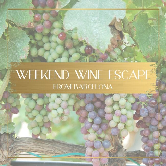 Wine escape from Barcelona feature