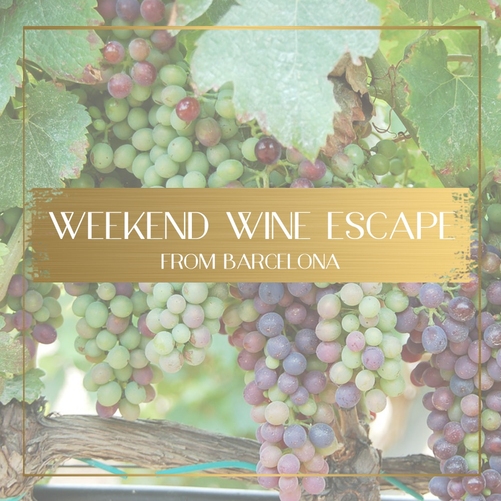 Weekend wine escape from Barcelona - includes full itinerary