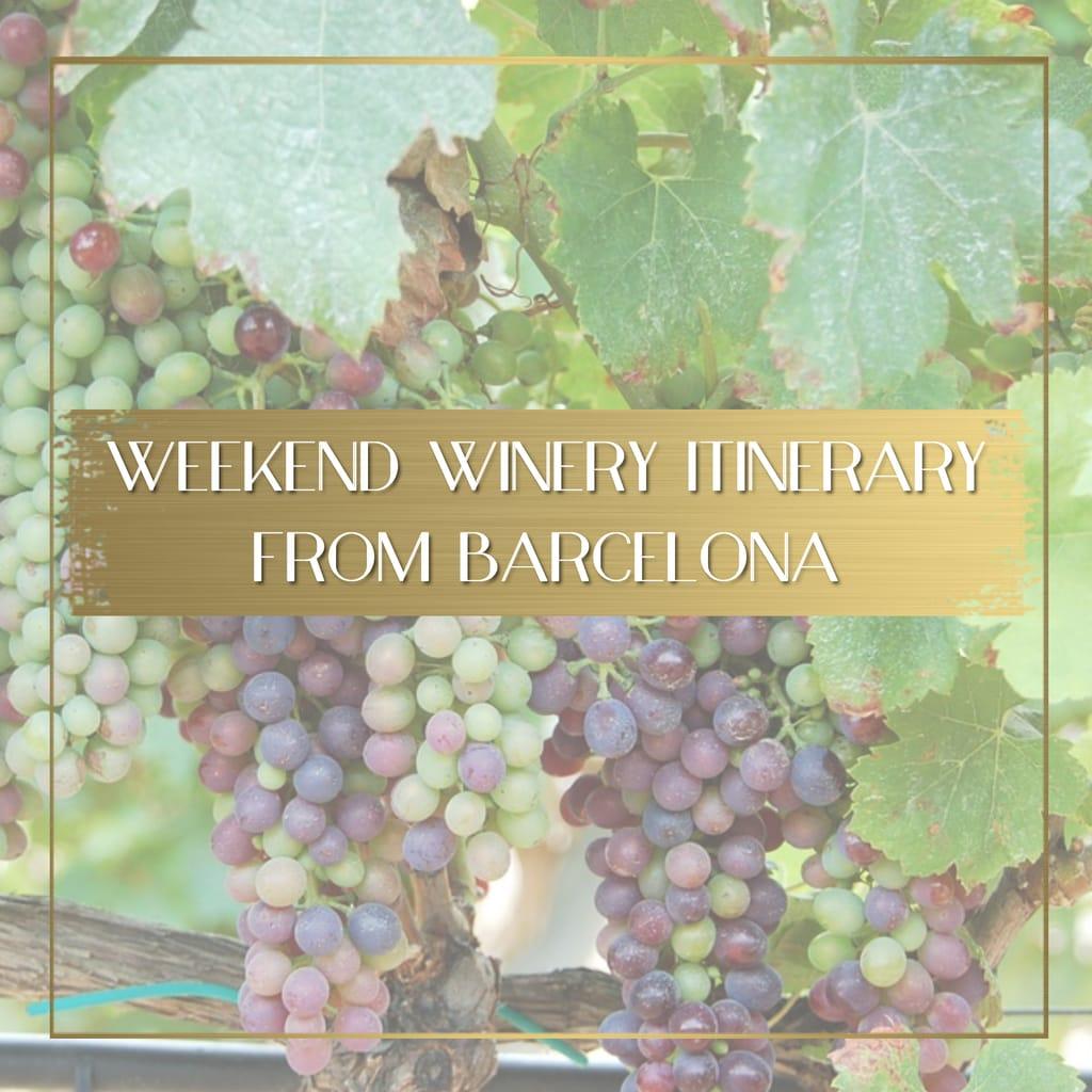 Winery near Barcelona feature