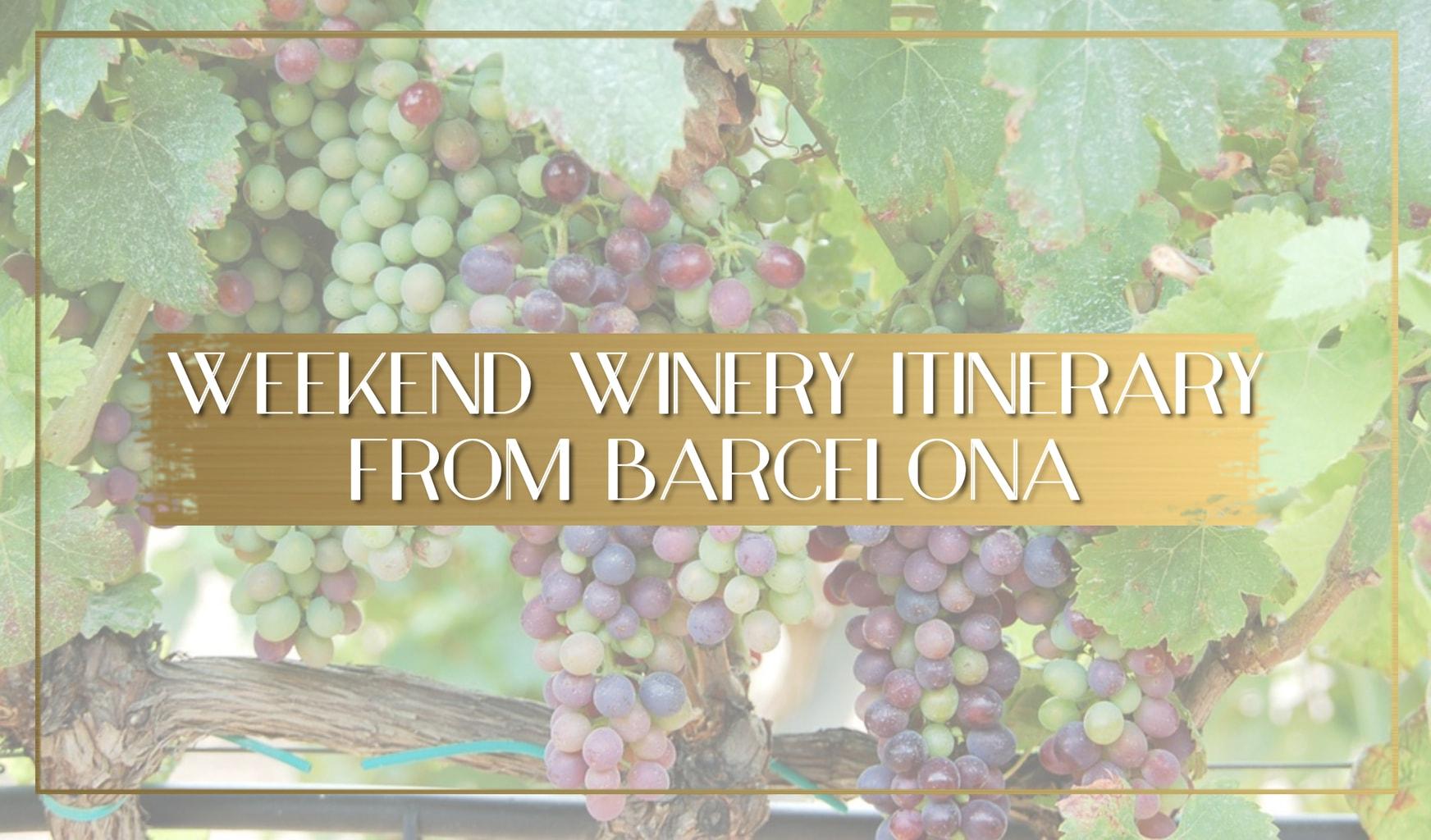 Winery near Barcelona main