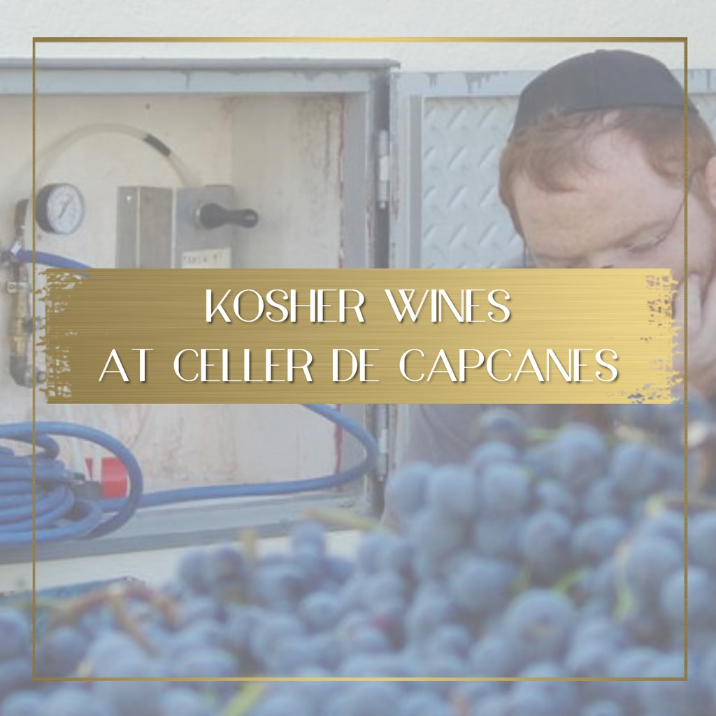 Learning about Kosher wines at Celler de Capcanes feature