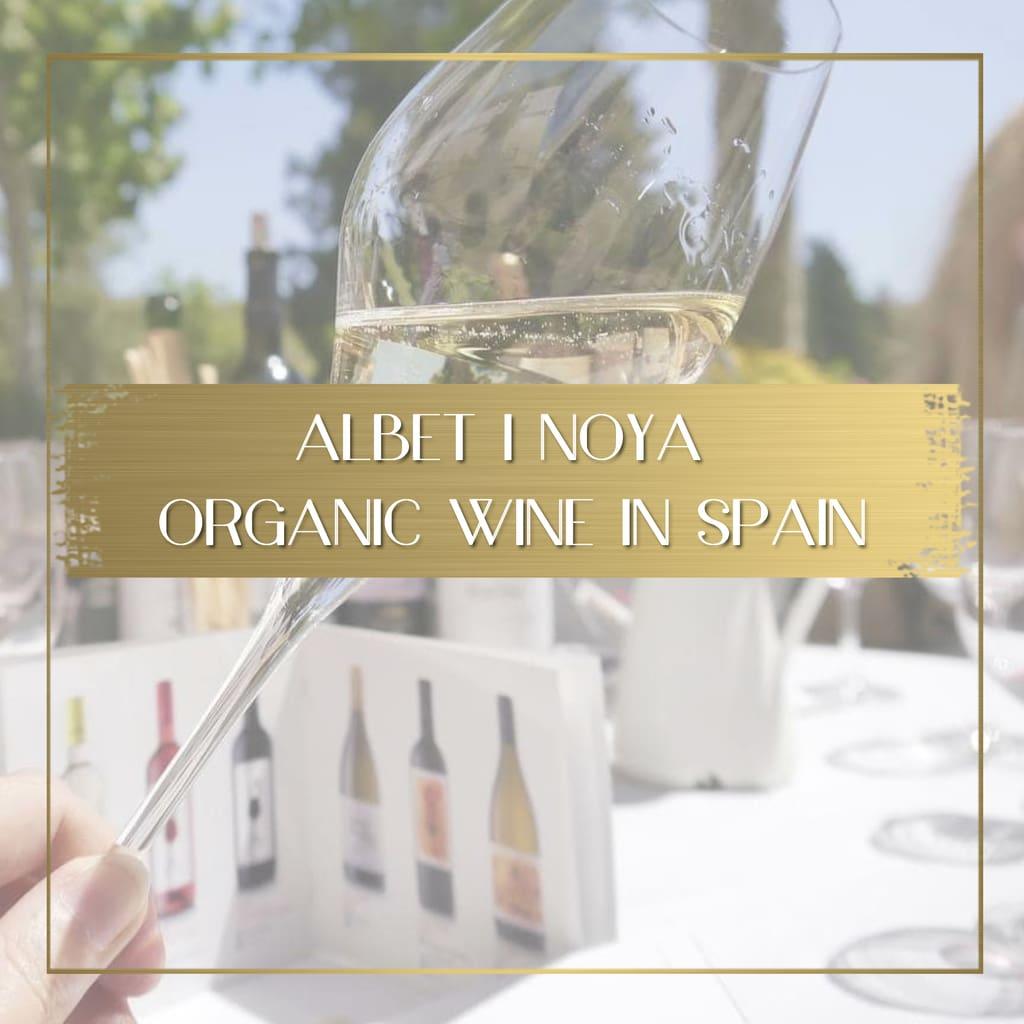 Albet i Noya Organic Wine in Spain feature