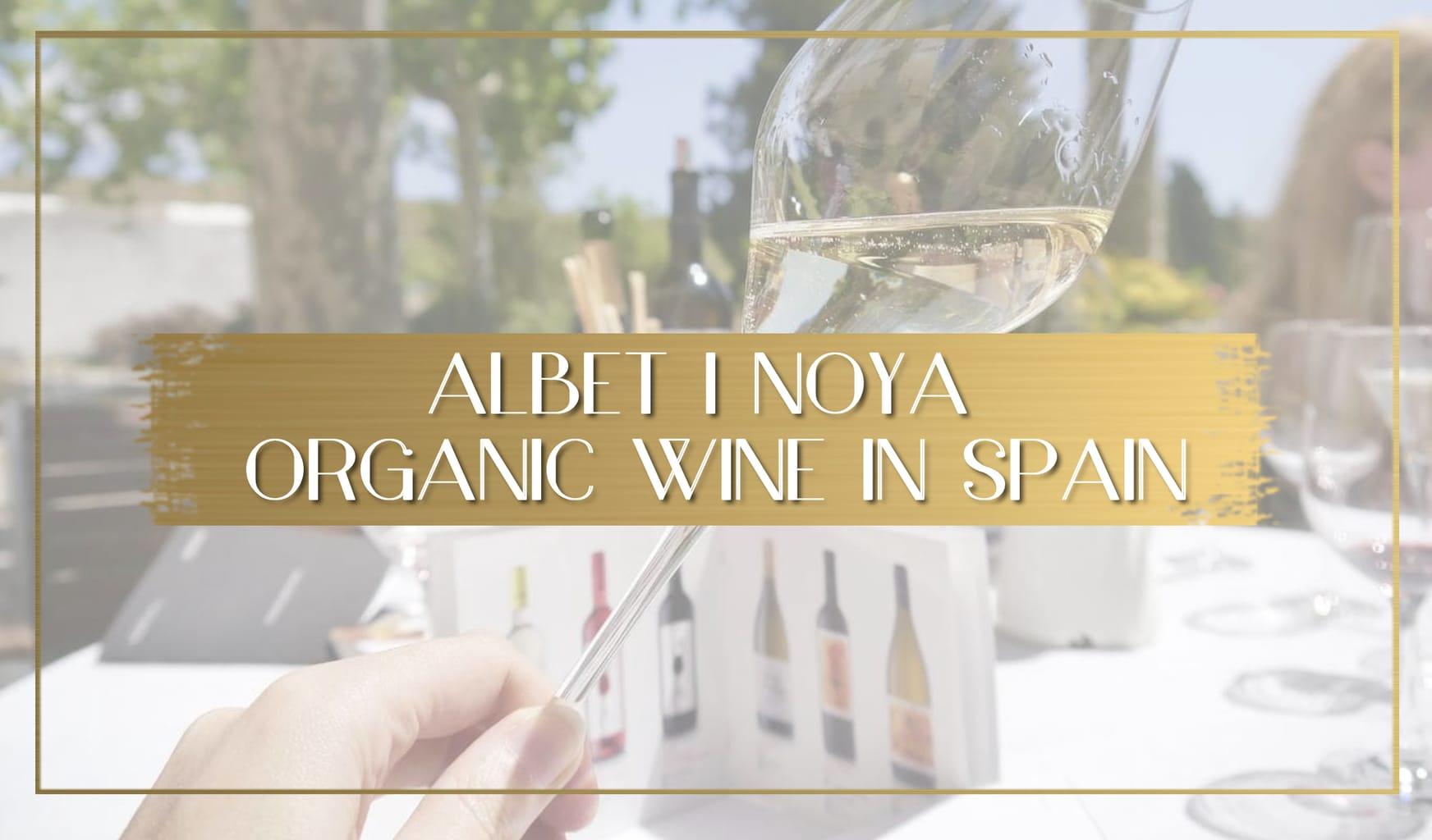 Albet i Noya Organic Wine in Spain main