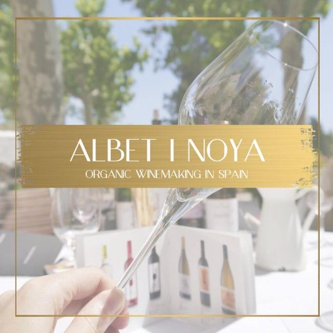 Albet i Noya feature