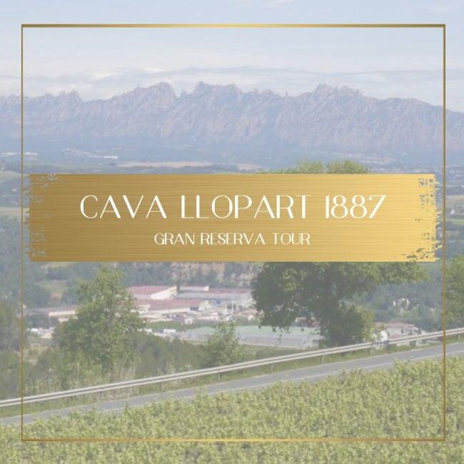 Cava Llopart feature