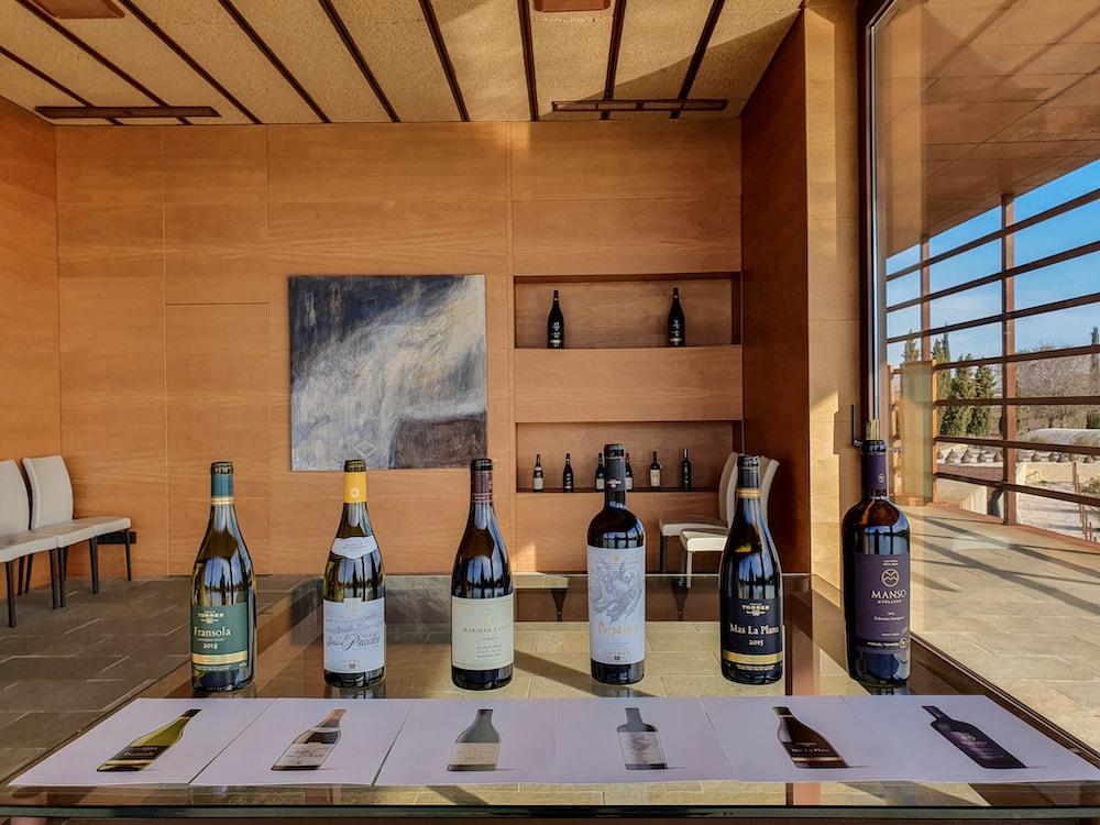 Exclusive wine tasting at Torres