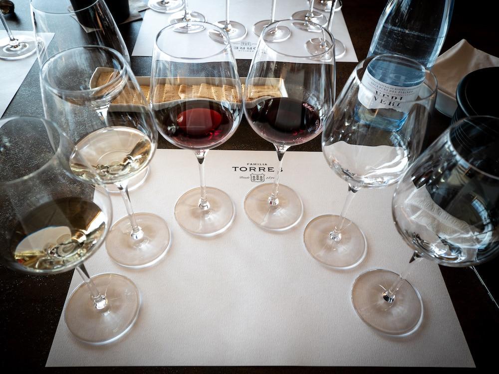 Familia Torres Exclusive Signature Wine Experience