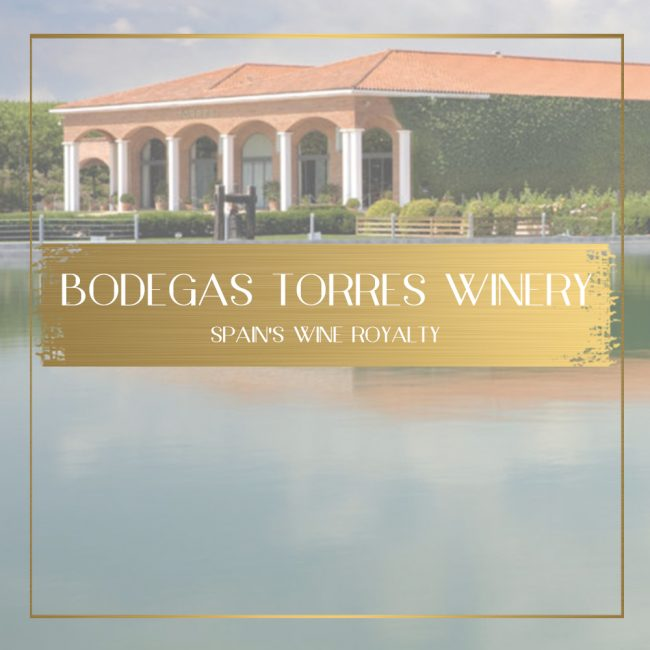 Torres Winery feature