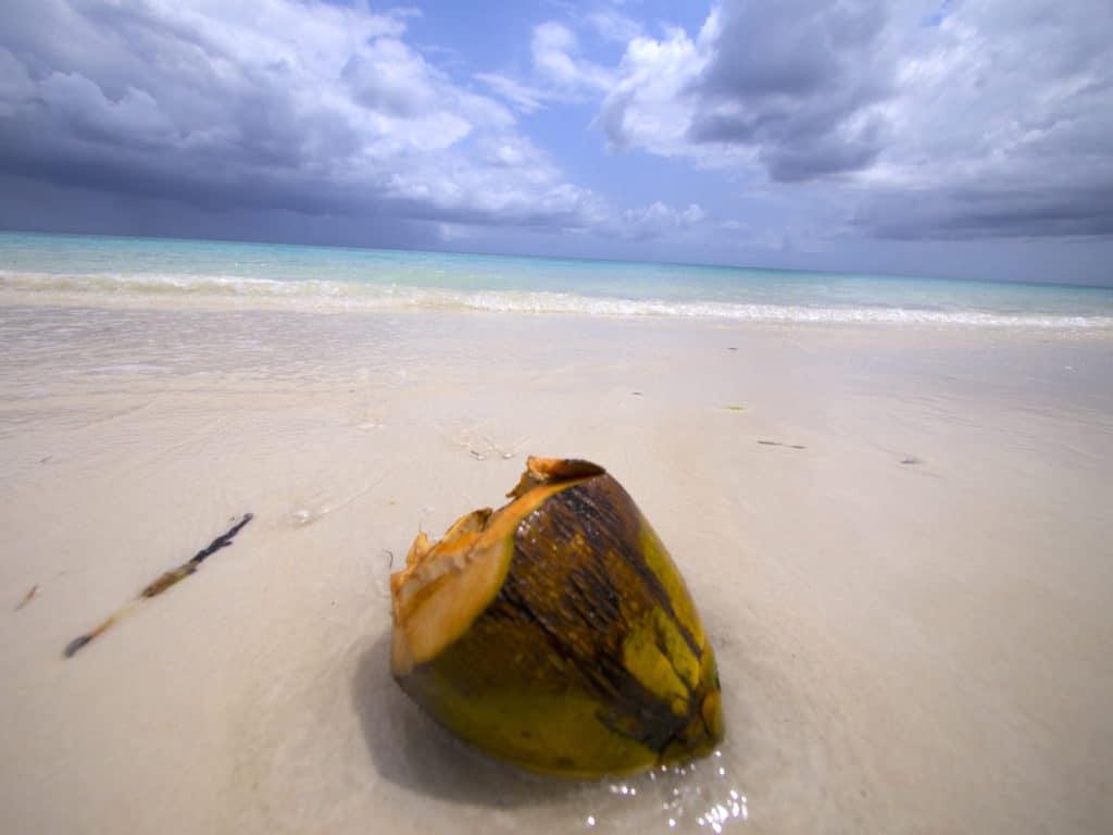 The Manta Resort beach