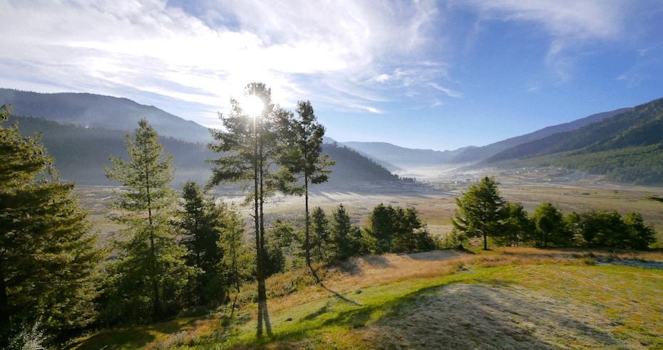 Photos of Bhutan forest