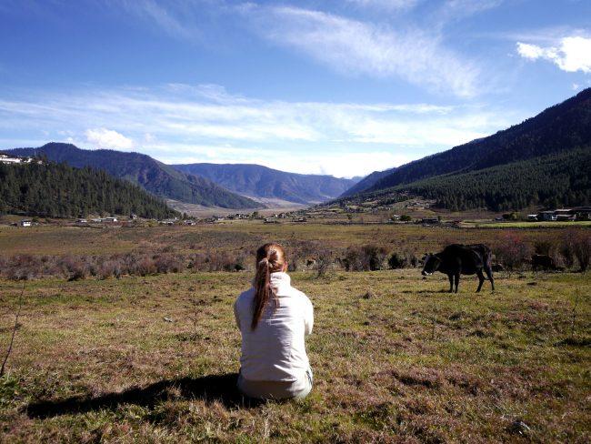 Gangtey's valley