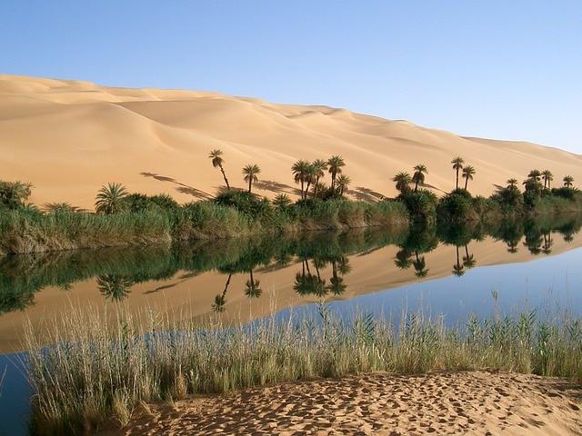 Libya oasis