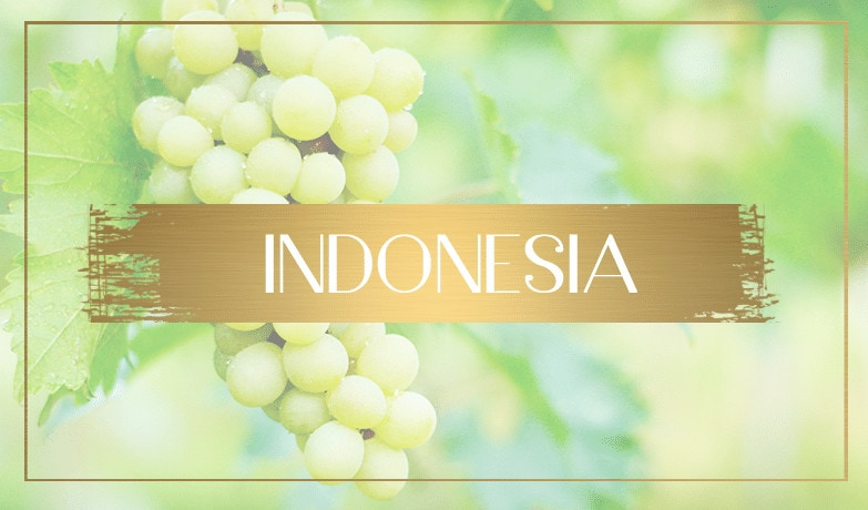 wine tourism indonesia