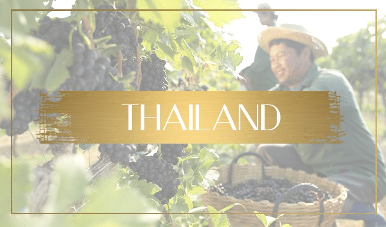 wine tourism thailand