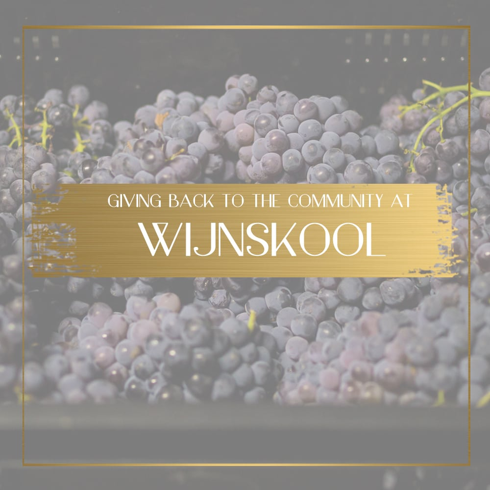 Wijnskool feature