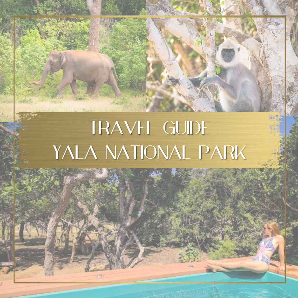 Travel guide to Yala National Park Sri Lanka feature