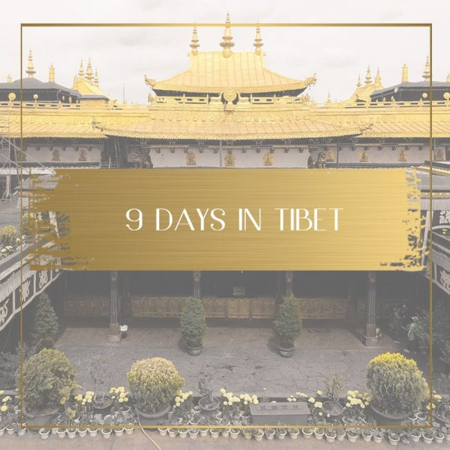 9 days in Tibet Feature