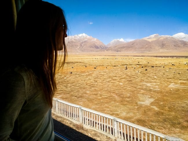 Looking at the scenery on the train to Lhasa