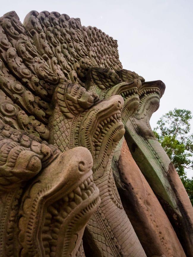 Naga the protector