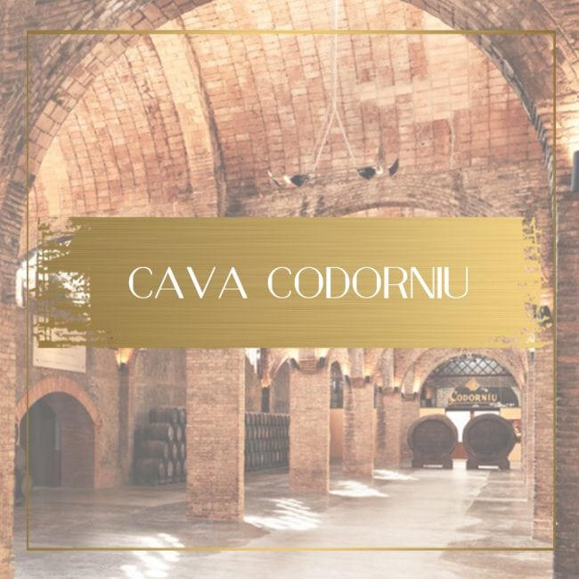 Cava Codorniu Feature