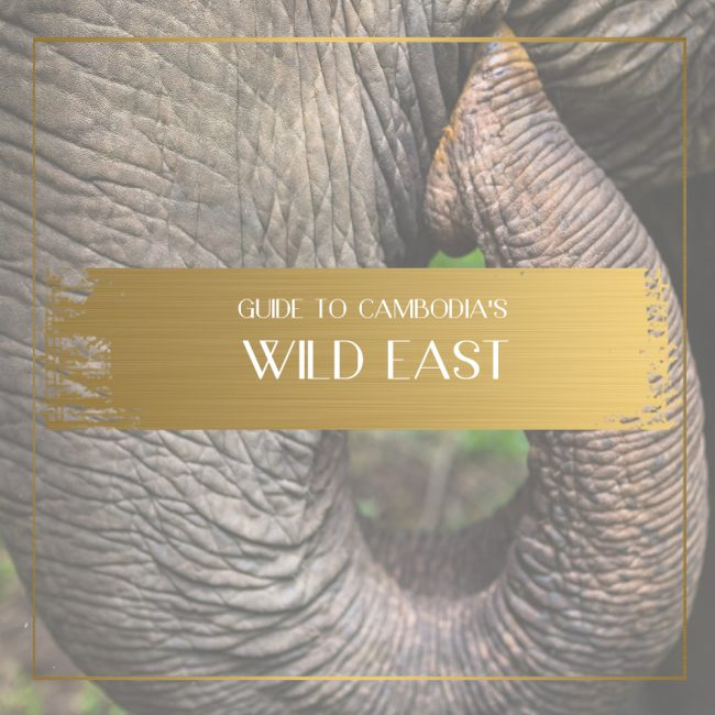 Wild east of Cambodia Feature