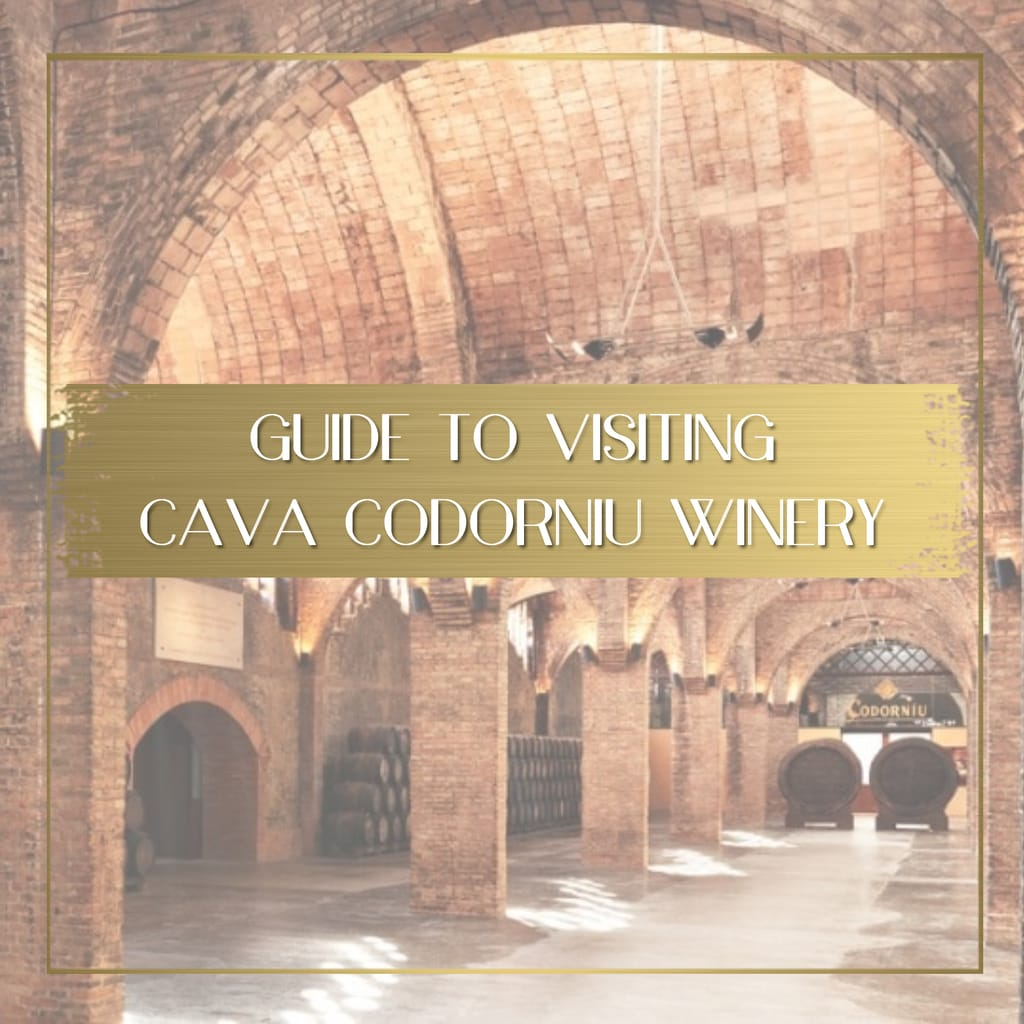 Cava Codorniu Winery feature