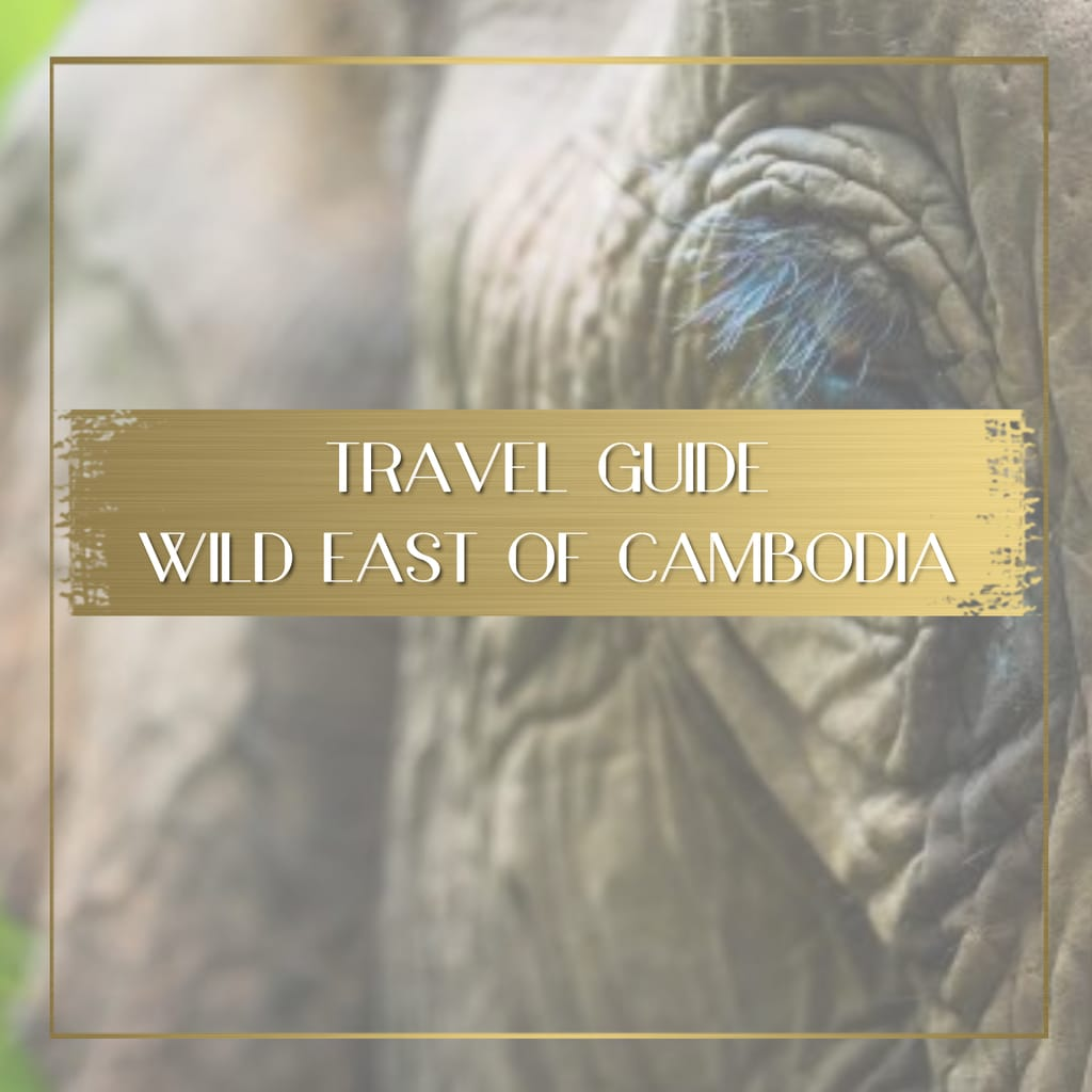 Guide to Cambodia's Wild East feature