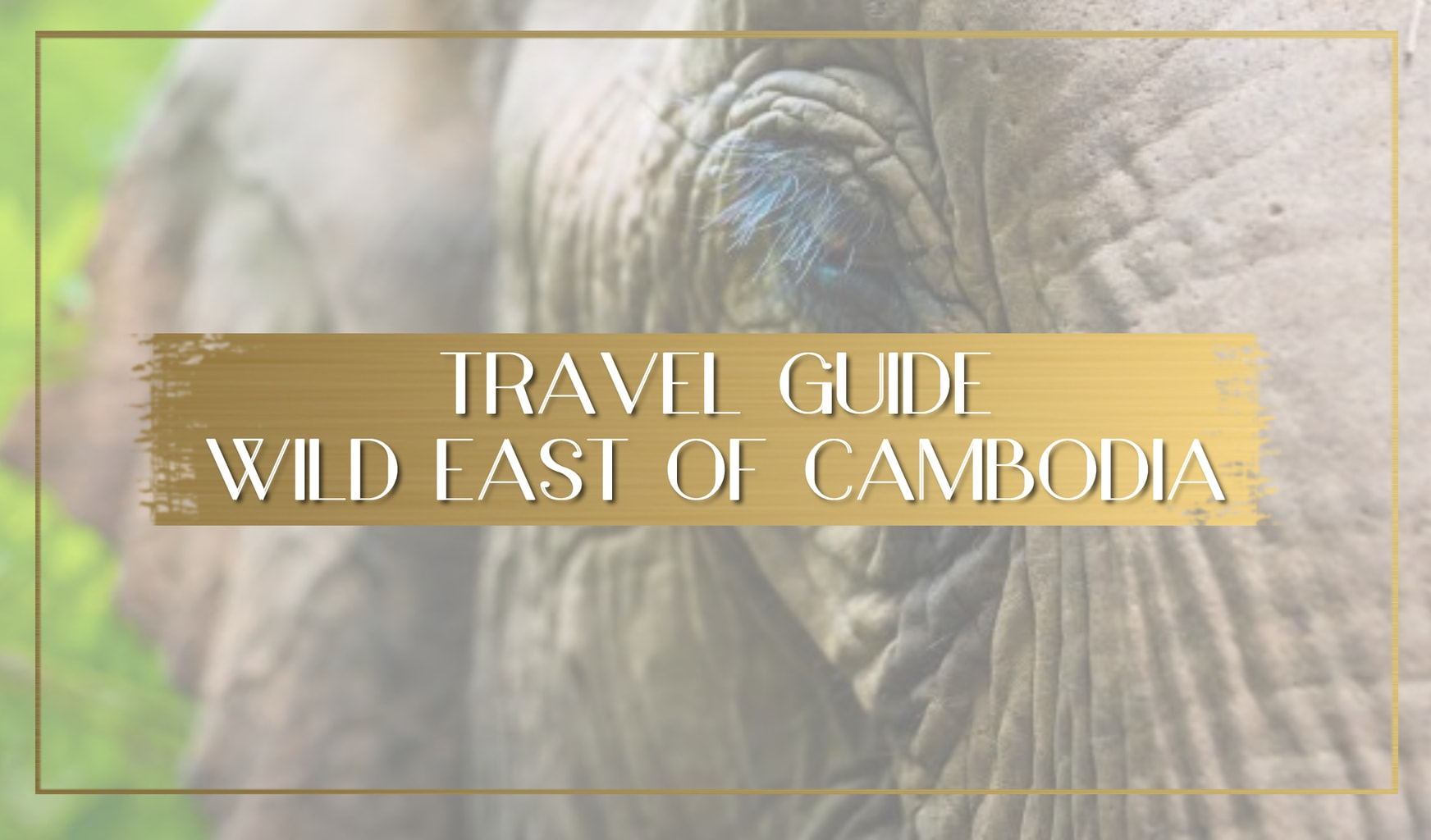 Guide to Cambodia's Wild East main