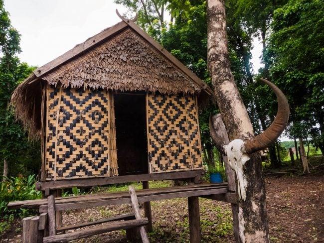 Hut in the village