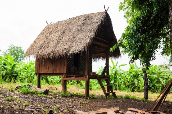 Hut in the jungle of Ratanakiri