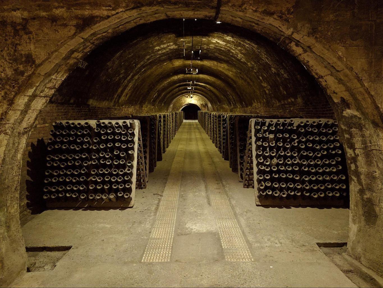 Codorniu cellar